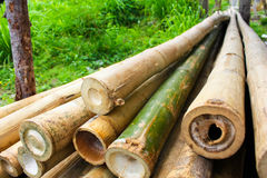 Bamboo sticks background Stock Photos