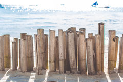 Bamboo sticks on the beach with the sea view Royalty Free Stock Image