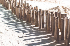 Bamboo sticks on the beach with white sand Royalty Free Stock Photos