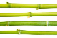 Bamboo sticks isolated Stock Images