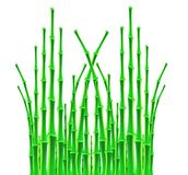Bamboo sticks over white background Royalty Free Stock Photo