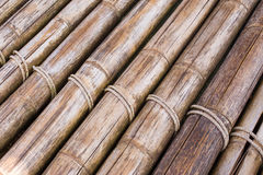 Bamboo sticks with a rope Stock Images