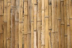Bamboo sticks splintered and assembled Royalty Free Stock Images
