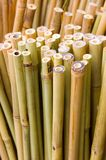 Bamboo Sticks Vertical. Bamboo sticks for sale at market, shot from above with the cut part in focus Royalty Free Stock Image