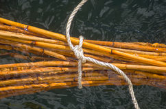Bamboo sticks in water Royalty Free Stock Photography