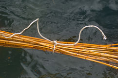 Bamboo sticks in water Royalty Free Stock Photos