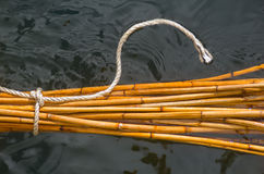 Bamboo sticks in water Stock Images