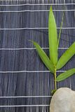 Bamboo and stone Royalty Free Stock Photo