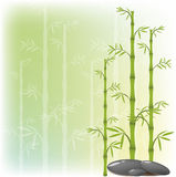 A bamboo and stone Royalty Free Stock Image