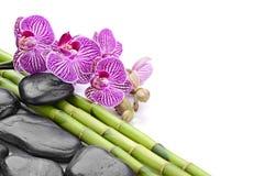 bamboo stones zen Στοκ φωτογραφία με δικαίωμα ελεύθερης χρήσης