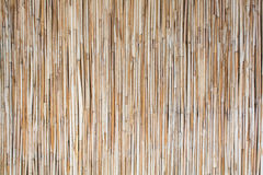 Bamboo straws Royalty Free Stock Images