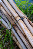 Bamboo. Strips on grass background Royalty Free Stock Photography