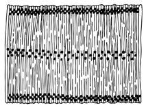 Bamboo sushi cloth stock illustration