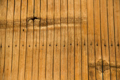 Bamboo table texture Royalty Free Stock Image