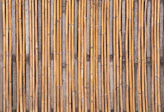 Bamboo texture. Abstract background of bamboo close up Royalty Free Stock Image