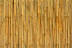 Free Bamboo Texture Royalty Free Stock Photography - 17485507