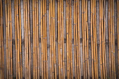 Bamboo texture. Abstract background of bamboo texture Royalty Free Stock Images