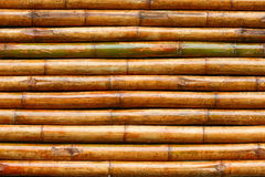 Bamboo texture. A bamboo texture and background Royalty Free Stock Images