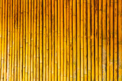 Bamboo Texture. The Bamboo Texture With Natural Stock Images