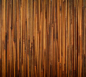 Bamboo texture. With natural patterns Stock Images