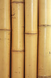 Bamboo texture. Abstract bamboo wood texture background Royalty Free Stock Photos
