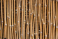 Bamboo Texture. Photo of a bamboo fence that is for textures or other uses Royalty Free Stock Photography