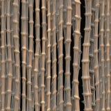 Bamboo texture. Illustration of bamboo art - seamless tiling Royalty Free Stock Photos