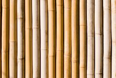 Bamboo texture, architecture decoration in asia. Stock Photography