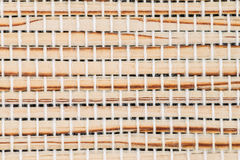 Bamboo texture background Royalty Free Stock Image