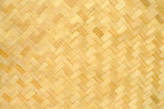 Bamboo texture and background. In the big garden stock image