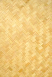 Bamboo texture and background. In the big garden stock photography