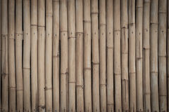 Bamboo texture background Stock Photography