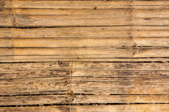 Bamboo texture Royalty Free Stock Photos