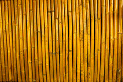 Bamboo texture III Royalty Free Stock Photography