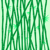 Bamboo texture. Illustration pattern  cute Royalty Free Stock Image