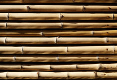 The bamboo texture Stock Photography