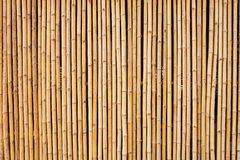 Bamboo texture with natural Stock Photography