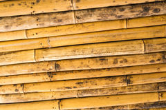 Bamboo texture pattern backgroung Royalty Free Stock Images