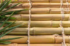 Bamboo texture twine pattern backgroung Royalty Free Stock Image