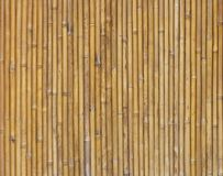 Bamboo texture vertical Royalty Free Stock Images