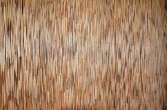 Bamboo texture. The wall of Bamboo texture Stock Images