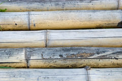 Bamboo texure Royalty Free Stock Photography