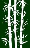 Bamboo tree. Abstract bamboo tree. black background  illustration Royalty Free Stock Photo