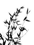 Bamboo Tree and Branches. Seen as a silhouette, resembling a Chinese painting Royalty Free Stock Photography