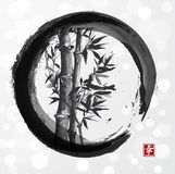 Bamboo Tree In Enso Zen Circle Stock Photo
