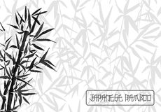 Bamboo tree japanese plant or tree. Traditional sumi painting vector illustration. Royalty Free Stock Photo
