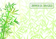 Bamboo tree japanese plant or tree. Traditional sumi painting vector illustration. Stock Photography