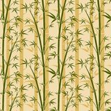 Bamboo tree vector seamless background. Bamboo plant pattern with leaf illustration Royalty Free Stock Photography