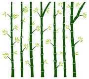 Bamboo Tree Wall Decal Stock Image