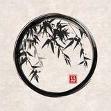Bamboo trees in black enso zen circle Stock Images